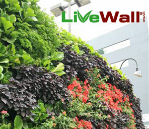LiveWall Living Wall System